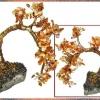 Дерево щастя: фен шуй природного талісмана