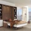 Дизайн інтер'єру суміщеної з вітальнею спальні