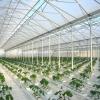 Фермерські тепличні конструкції
