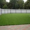 Газонна трава - прикраса заміського ділянки