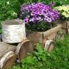 Ідеї   для оформлення присадибної ділянки в сільському стилі