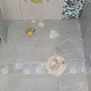 Як класти плитку в туалеті: поради майстра