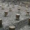 Як правильно закласти фундамент палі з ростверком?
