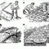 Як викласти доріжку з деревини в саду своїми руками