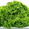 Як виростити зелень у теплиці?