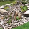 Краса каменів і рослин в рокарії