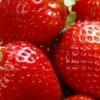 Маленькі секрети високих врожаїв полуниці