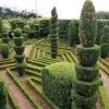Облаштування садового ділянки: секрети і хитрості