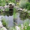 Оформлення ставка на дачі за допомогою природного каменю, підсвічування, фонтанів