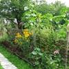 Плетений паркан в дизайні ділянки: як зробити і прикрасити тин