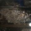 Підготовка підлоги для укладання ламінату: демонтаж і вирівнювання