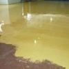 Фарбування підлоги - захист від впливу шкідливих факторів