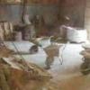 Керамічна плитка на підлозі в інтер'єрі: види, тонкощі укладання
