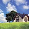 Приватизація земельної ділянки: необхідні документи і особливості процедури