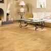 Пробка на підлогу: вибір і укладання