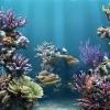 Ювелірні шедеври: сережки золоті з коралами