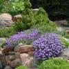 Сад каменів - шматочок декору своїми руками