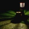 Садові ліхтарі - створіть чудовий дизайн вашої ділянки за допомогою оригінального освітлення