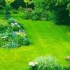 Створюємо газон біля будинку