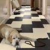 Стійке покриття підлог