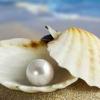 Властивості білого перлів