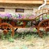 Телега для саду: невід'ємний атрибут сільського стилю