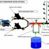 Пристрій системи крапельного поливу в теплиці