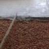 Варіанти утеплення бетонної підлоги в приватному будинку