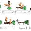 Віник для лазні: особливості виготовлення і застосування
